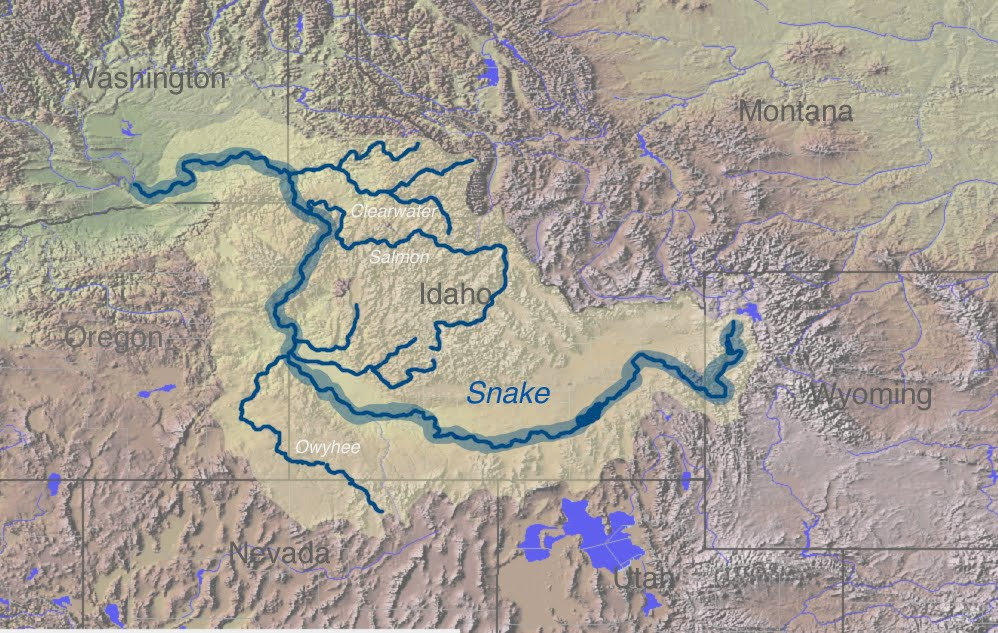 Op en rond de parkeerplaats van de snake river overlook groeien en