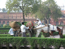 Gardening at the Red Fort