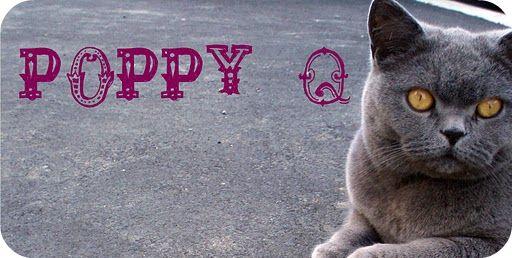 Poppy Q
