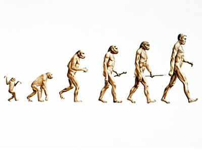 evolve, evolution, evolution of man, evolusion