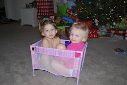 Alivia and Finley in Alivia's new baby pack-in-play (for her baby dolls)