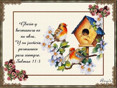 CELEBRACIONES CATOLICAS Citas bblicas