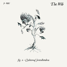 The Web - Clydotorous Scrotohendron