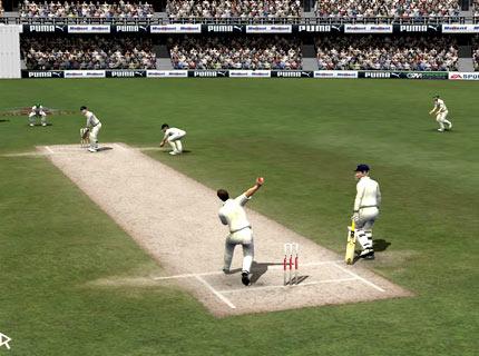 cricket-07-.jpg
