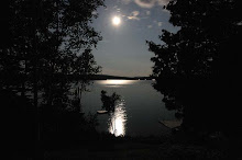 I AM IN LOVE WITH MOONLIT NIGHTS