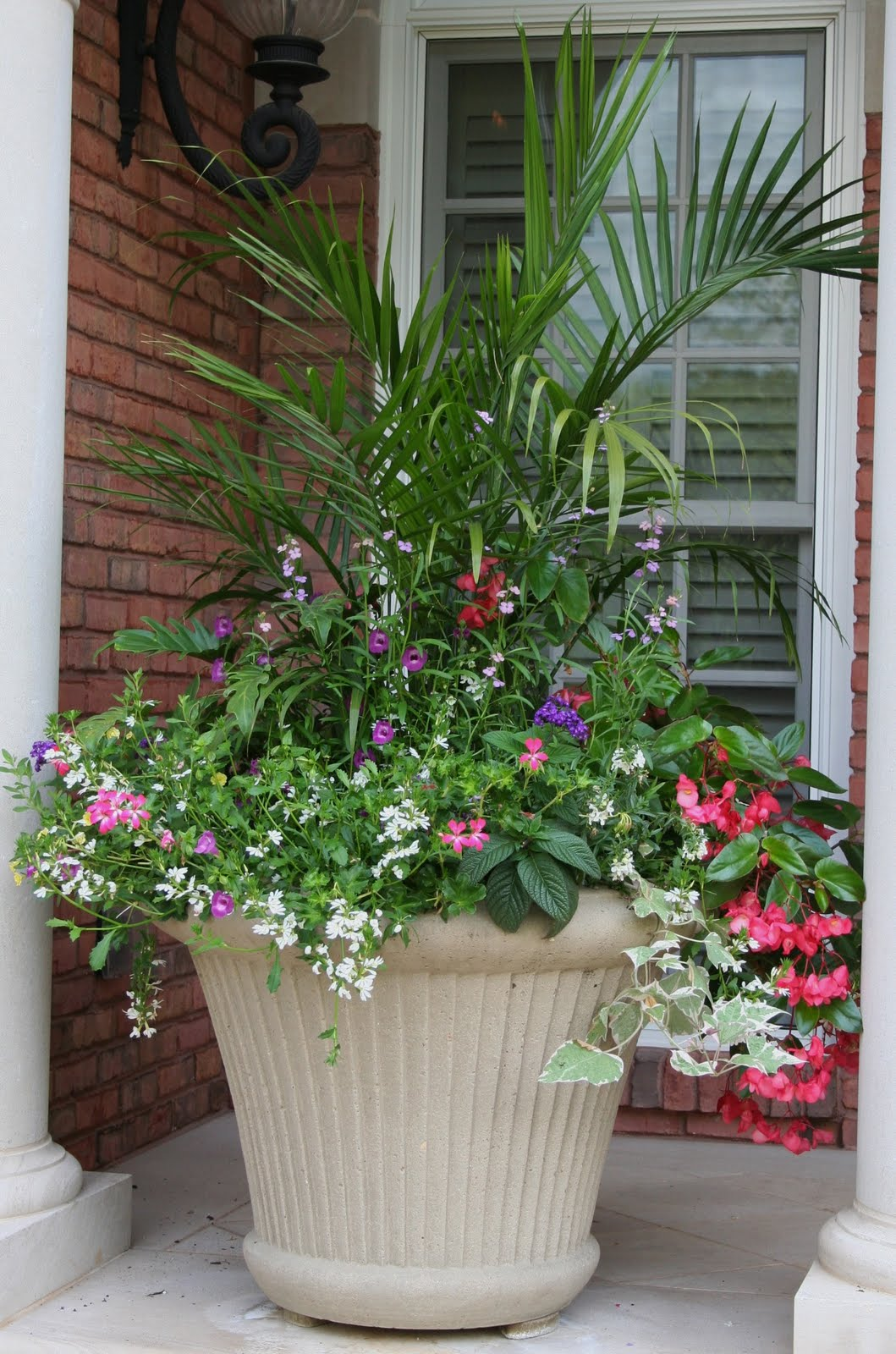 A chef in the garden 05 01 2010 06 01 2010 Container plant ideas front door