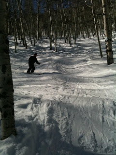 Beaver Creek again. Subzero temperatures and lots of icy slopes. We did manage to find some good snow however in Thrasher Glade on the main face. Picture by David Barton.
