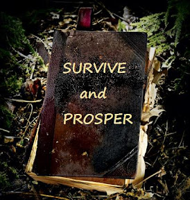 Survive and prosper book
