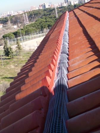 Los canalones reparar y limpiar canalones madrid - Instalacion de canalones ...