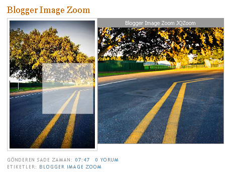 blogger-image-zoom