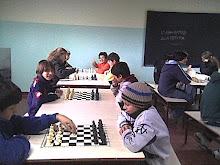Juegos Neuquinos 2008
