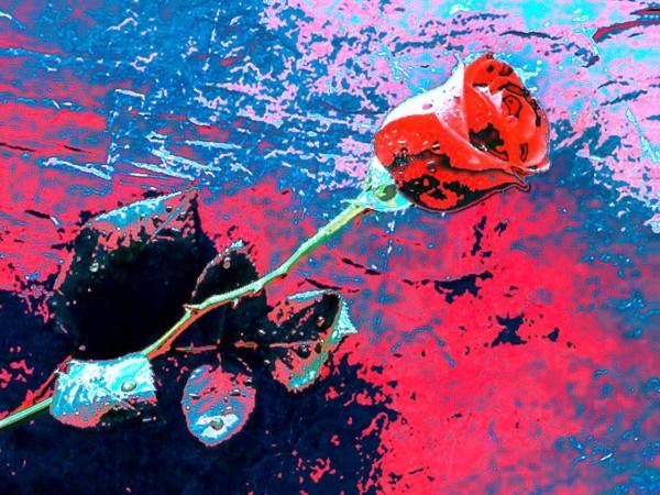 Quem ama não mata, espanca ou humilha