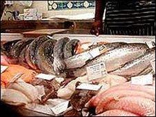 Óleo de peixe reduz tumores cancerígenos
