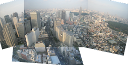 Tokyo by day from our hotel room