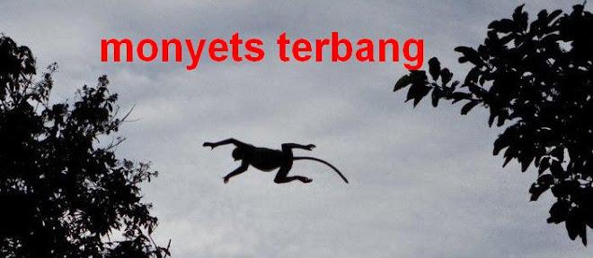monyets terbang