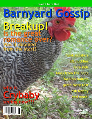 Latest issue of Barnyard Gossip