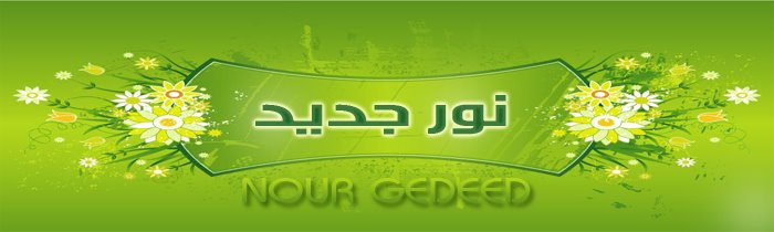 Nour_Gedeed