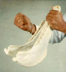 Instrumento tipico