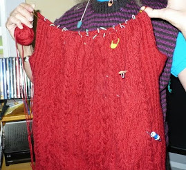my red aran, in slow progress