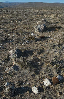 Ice Age Floods errtaic cluster. Image shows smalls stones among the erratics.
