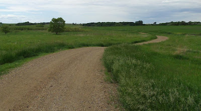 curvy gravel road through USFW refuge
