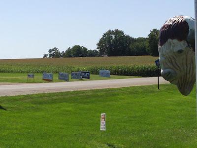 Prostrollo's buffalo and Republican signs across road
