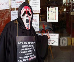 MANIFESTACION EN LA CASA DE JUJUY