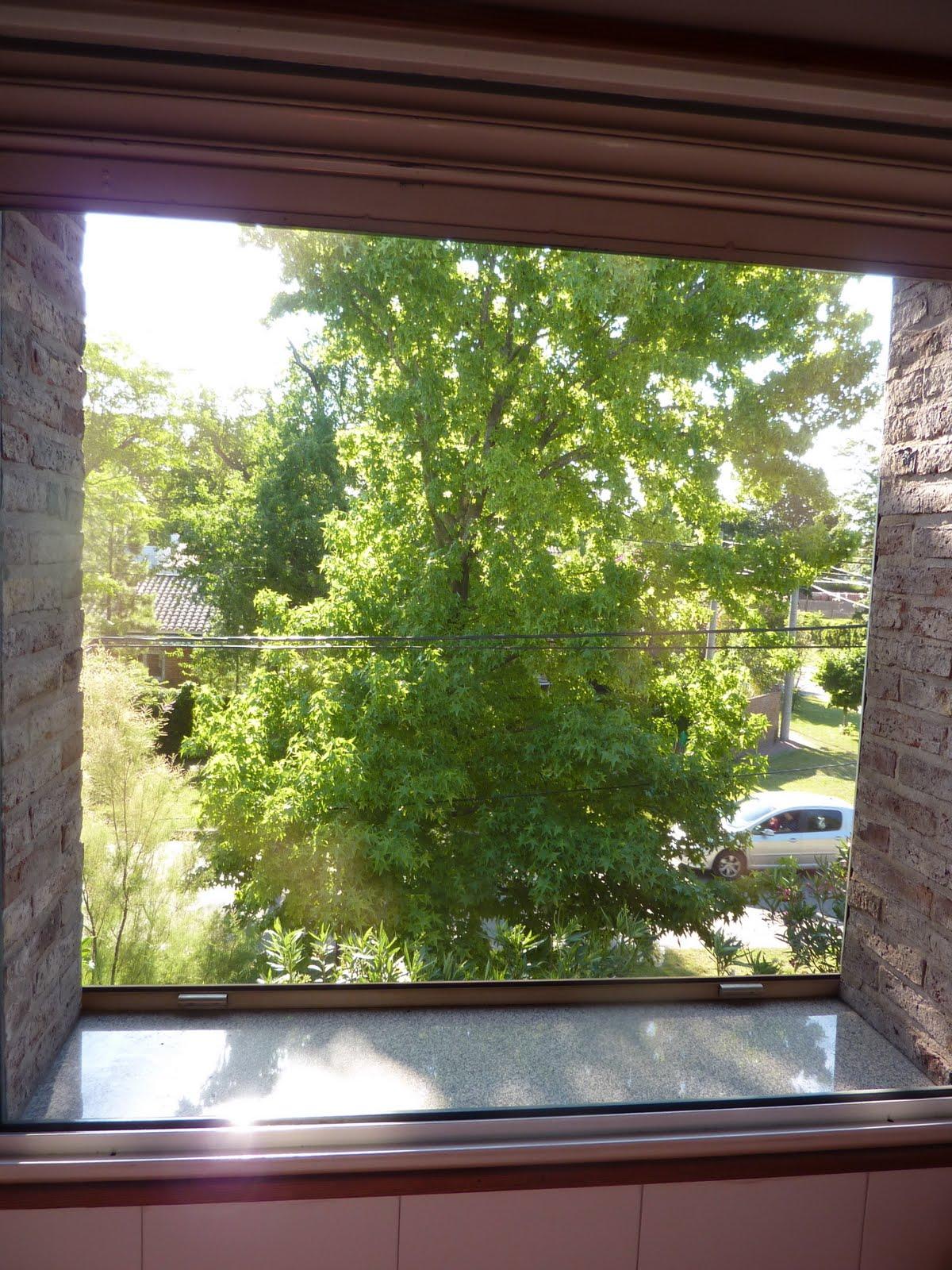 Baño Con Vista Al Jardin:casafisherton: Ventana con vista a calle Tarragona y Jardín (desde