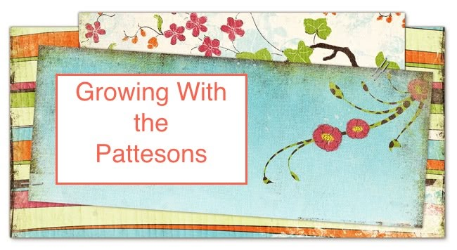 Growing With the Pattesons