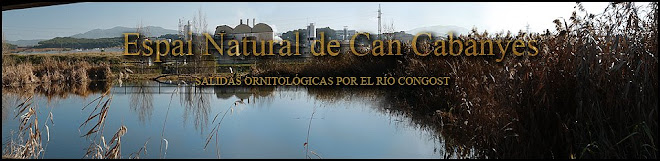 Can Cabanyes