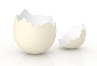cascara-huevo.jpg