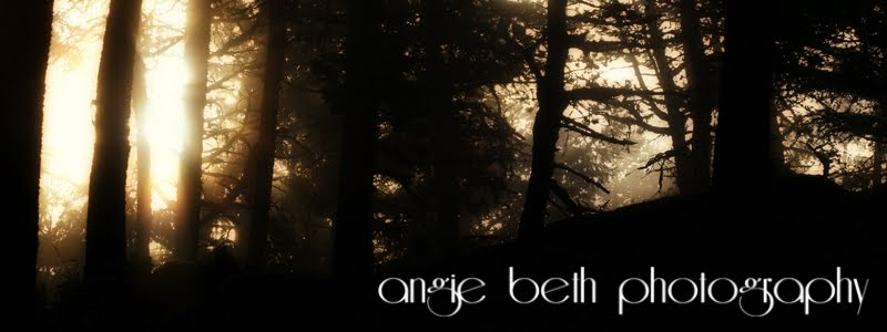 Angie Beth Photography