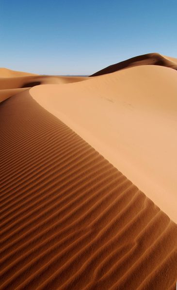 [365px-Morocco_Africa_Flickr_Rosino_December_2005_84514010_edited_by_Buchling.jpg]
