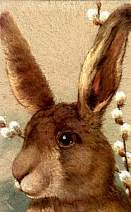 Chinese Astrology: The RABIT
