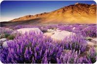 12 paisajes naturales
