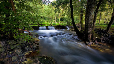 Paisajes Naturales - Natural Landscapes and Wallpapers