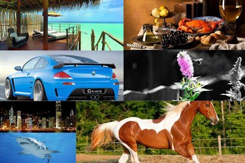 Selecciones especiales del Banco de Imágenes Gratuitas XXXVII (Haz click aquí para ver todas las fotos)