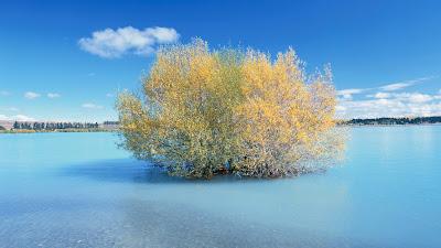Hermosas fotografías de paisajes naturales - Beautiful nature landscapes