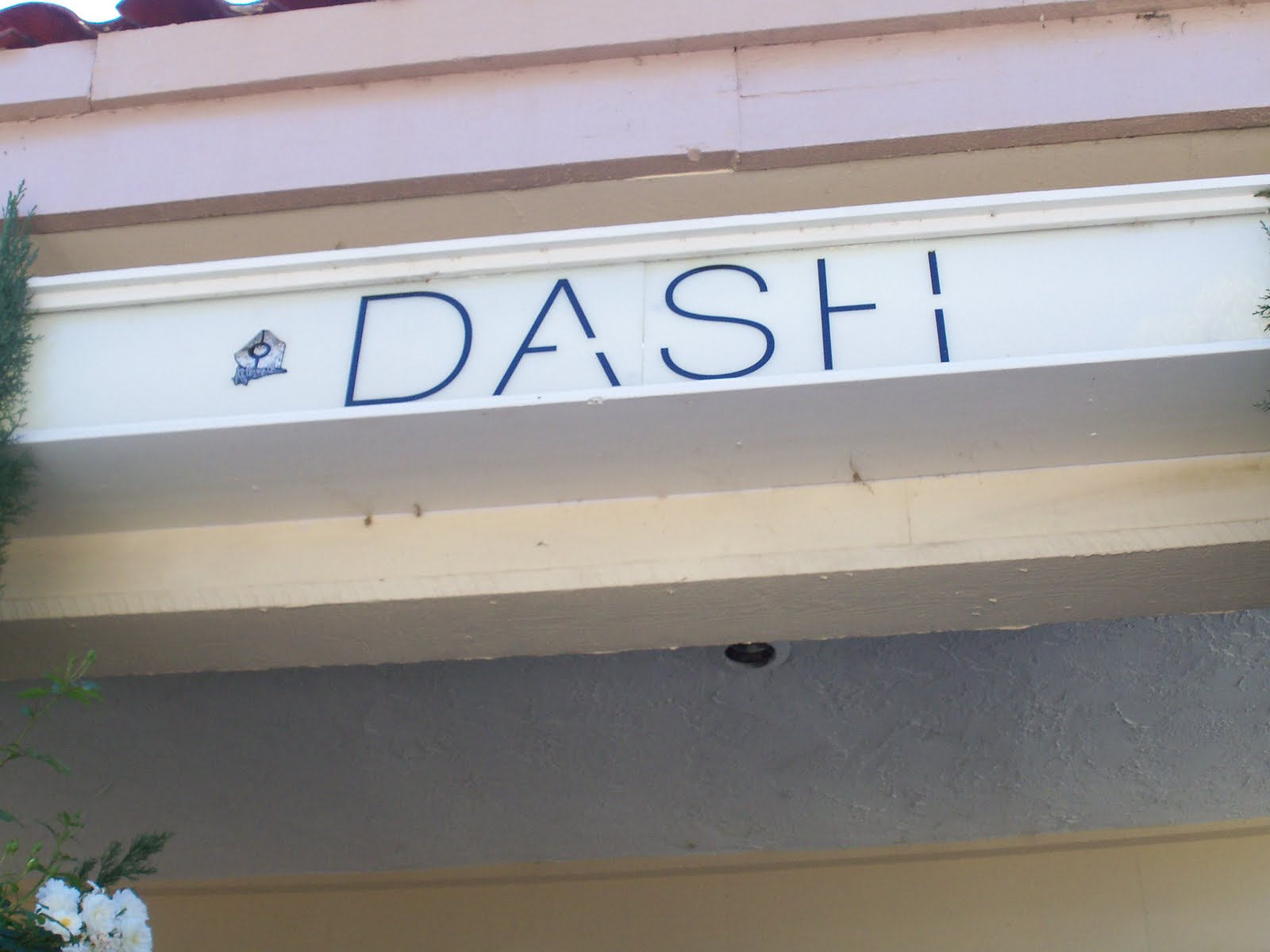 dash-clothing-stores