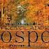 """Provocador Gospel: Resenha do CD """"Viva"""" de Cassiane (Desculpe a sinceridade!)"""