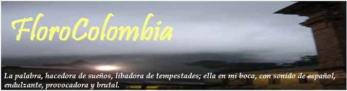 FloroColombia