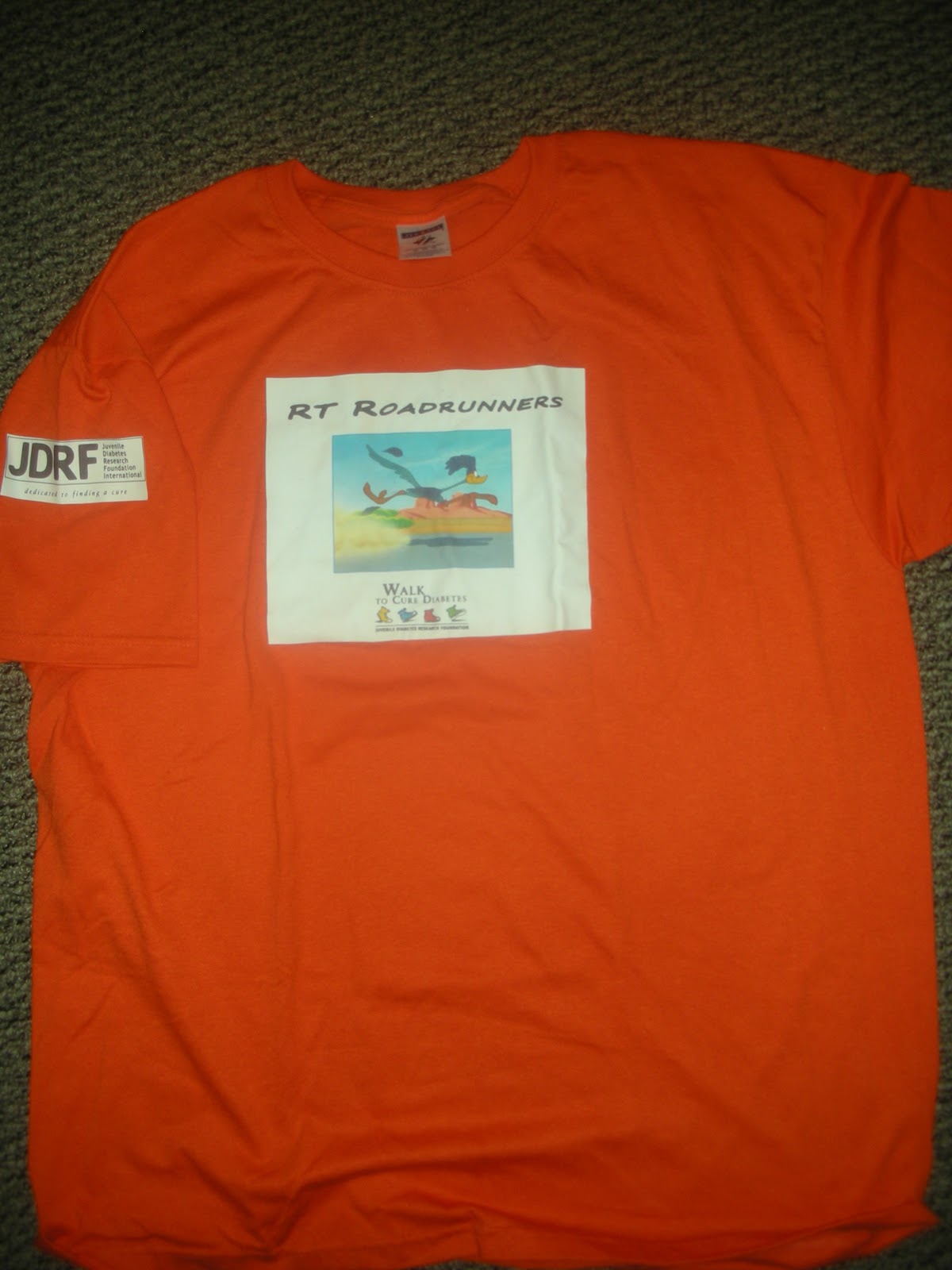 Jdrf ron santo walk to cure diabetes palos hills t shirt for Jdrf one walk t shirts