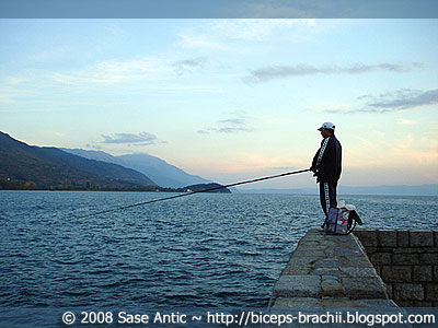 Evening Fishing: Fisherman In Ohrid Lake Port