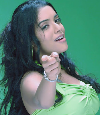 Southern Beauty Actress Asin Next hindi film with Salman Khan