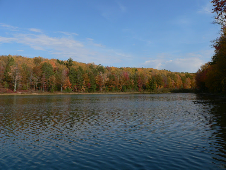 Fall on Turtle Lake