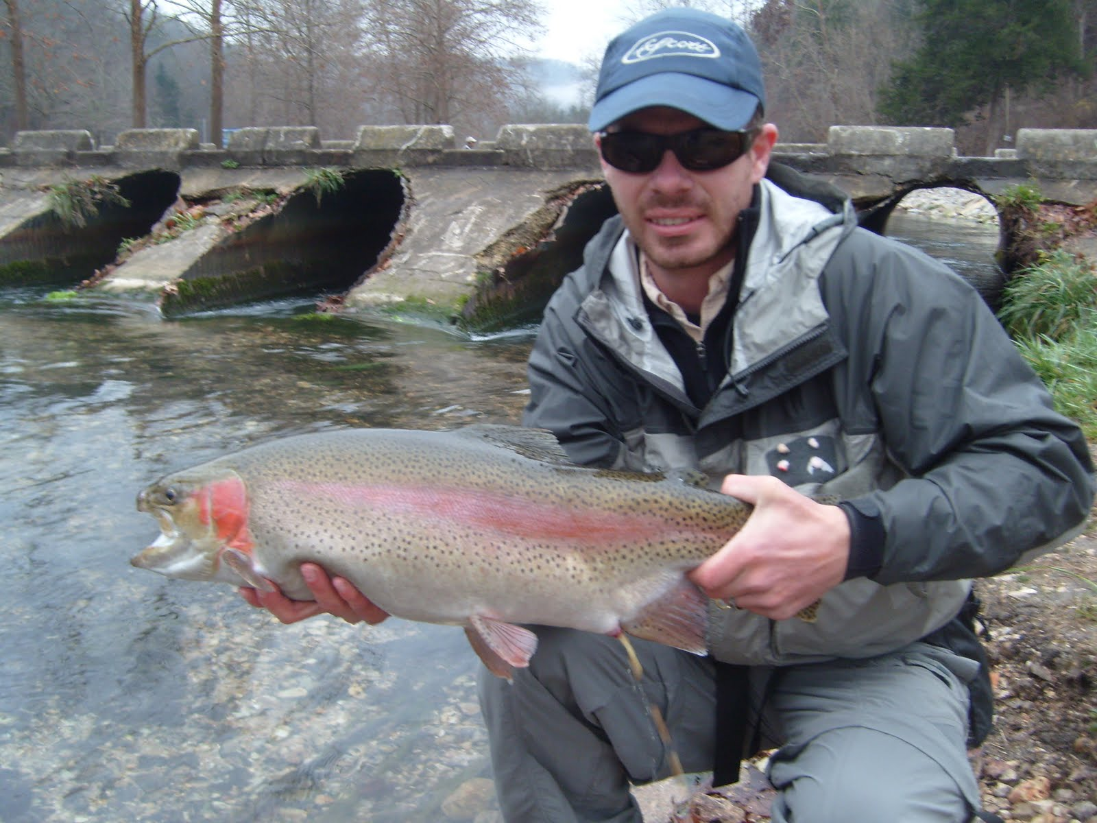 Arkmo fly fishing for Roaring river fishing
