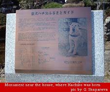 Homenagem ao Hachiko