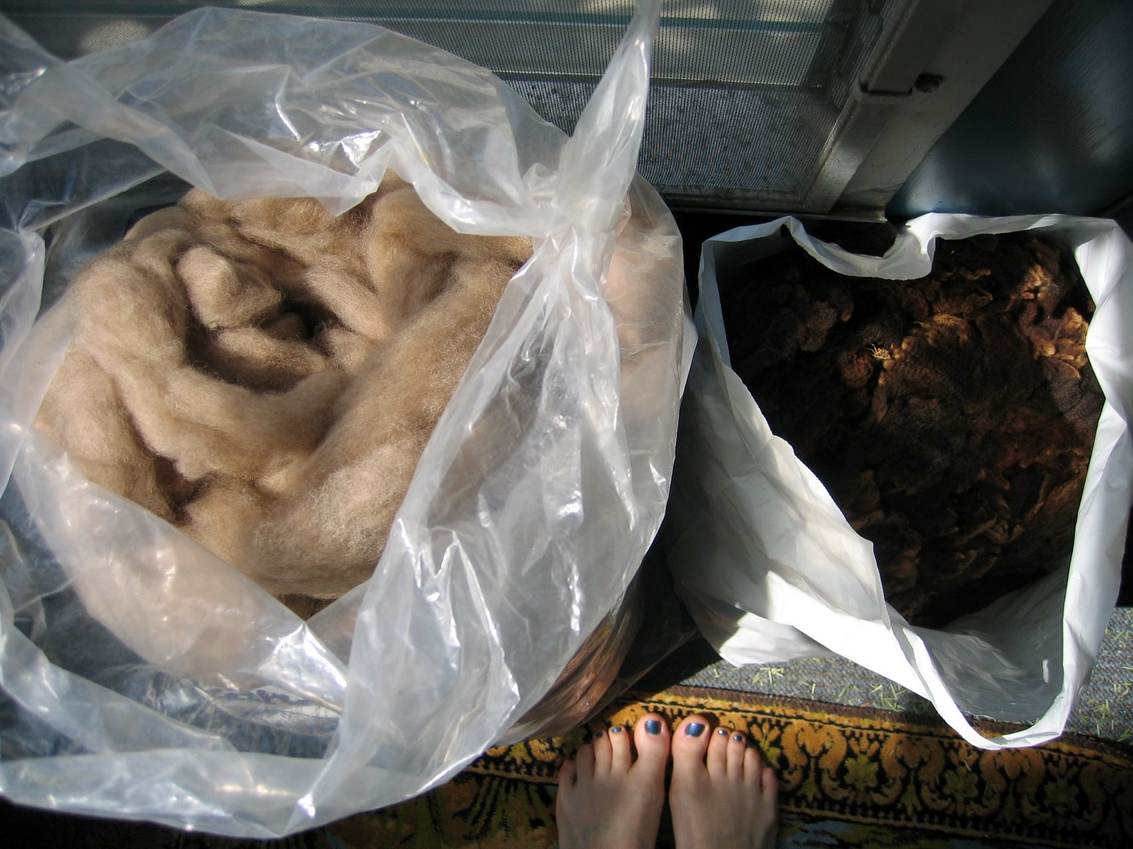 [Roving+and+fleece+gift,+with+feet+for+scale!]