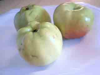 Svenska Äpplen