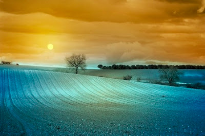 perfect harmony by roberto lorenzoni